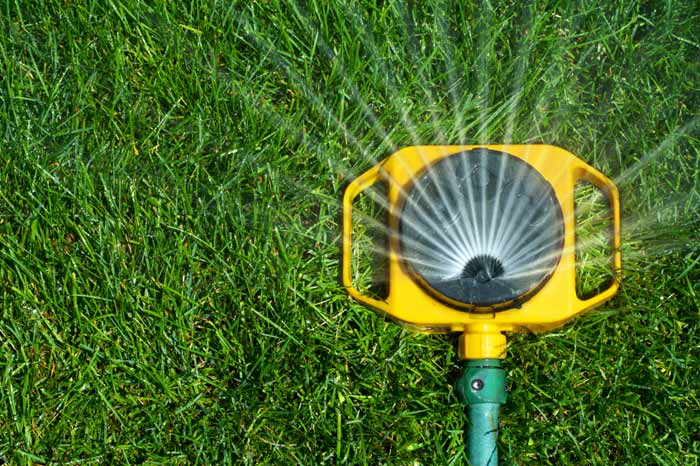 Caring for Your New Lawn