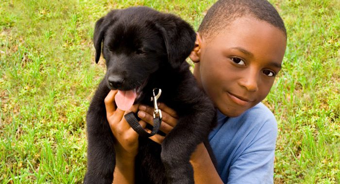 Little boy holding black puppy in grass