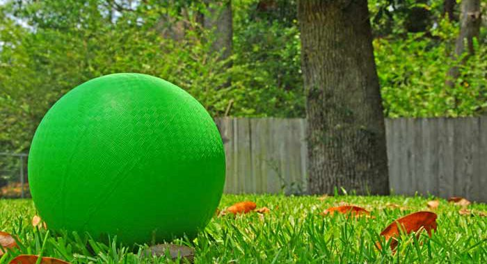 Green kickball sitting in backyard