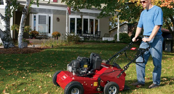 Improving the Health of Your Lawn