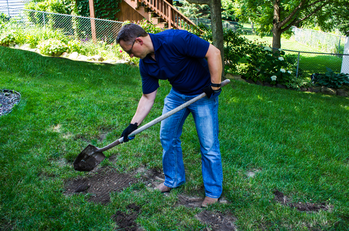 Tips for Topdressing Your Lawn