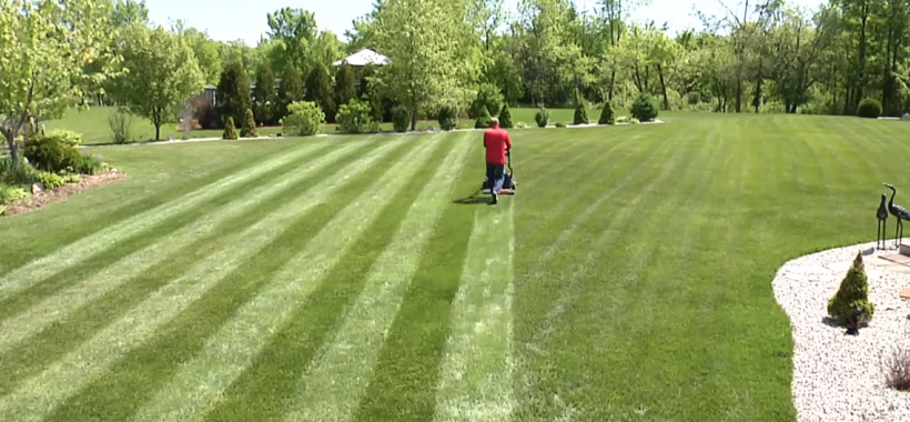 Man lawn striping backyard with mower