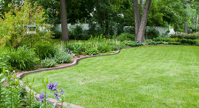 How To Design A Beautiful Yard That S Mower Friendly