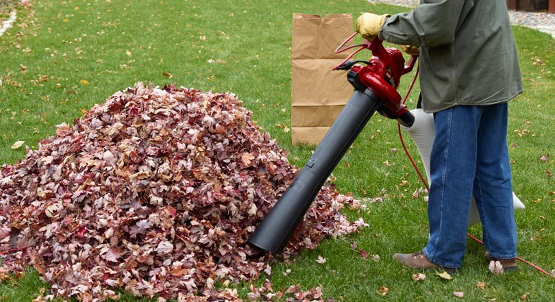 Pile of leaves and paper bag with person using a leaf blower to vacuum leaves.